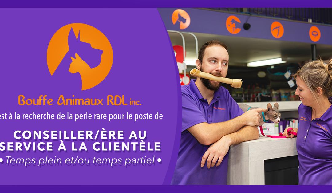 POSTE DE CONSEILLER/ÈRE AU SERVICE À LA CLIENTÈLE